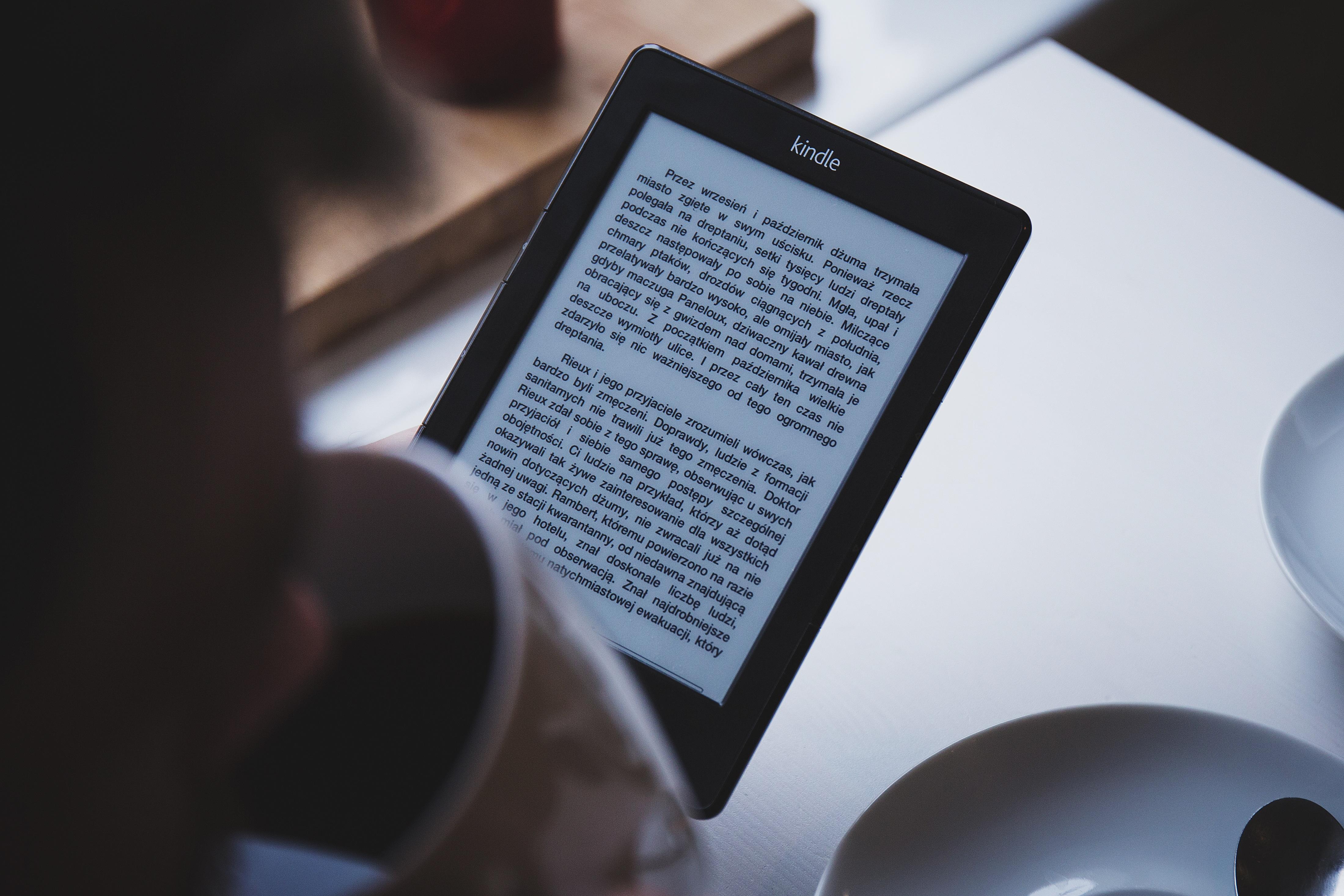"Ebook Myths #2 – ""It's okay if my ebook looks lousy. It's free."""